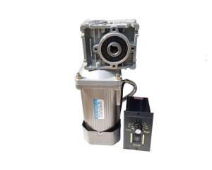 Gearbox NMRV030.040 60w DC motor